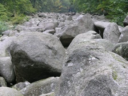 steinig